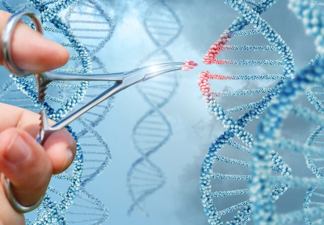 Breakthrough In CRISPR Technology