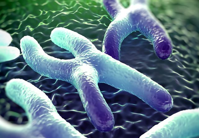 Gene Therapy And Usher Syndrome