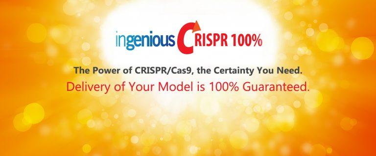 New Service ingenious CRISPR 100%