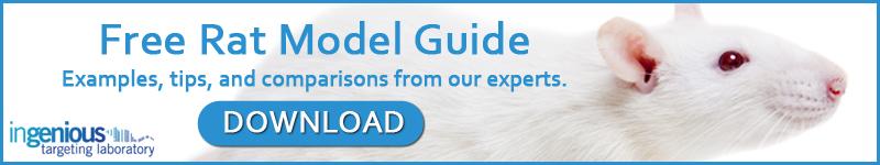 Free Rat Model Guide