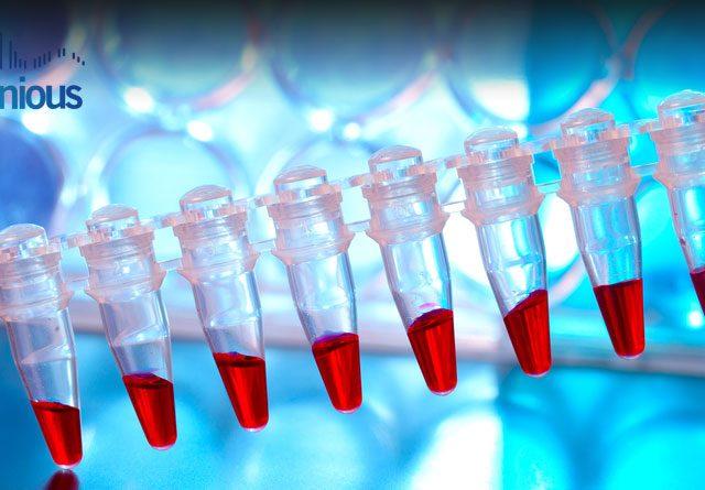 Stem Cell Line