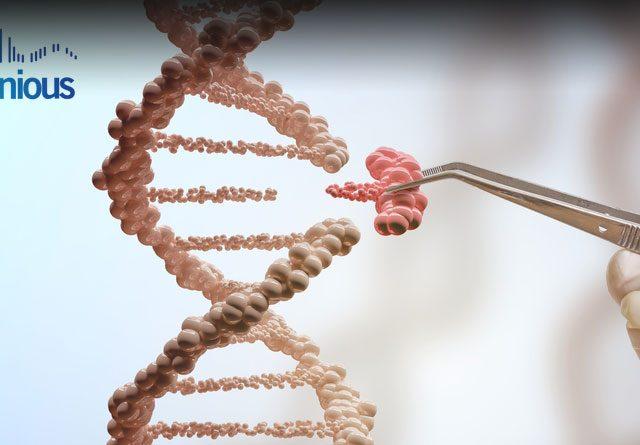 CRISPR Gene Targeting