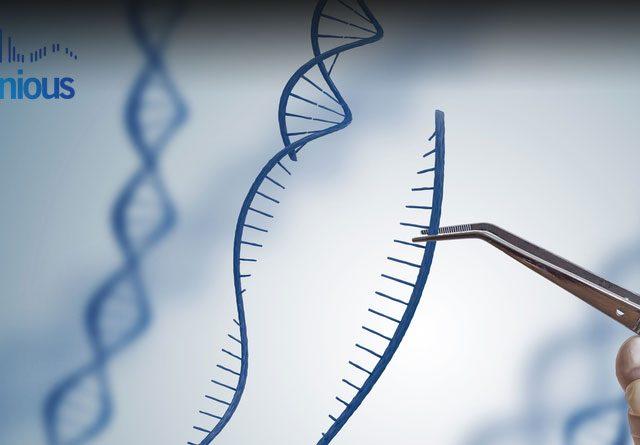 CRISPR Knockdown