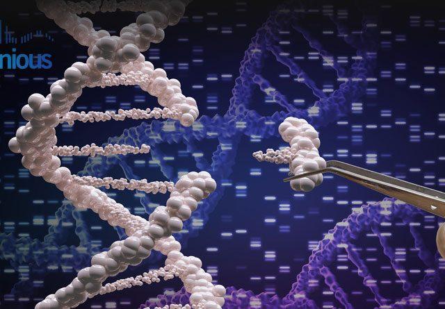 CRISPR Knockout