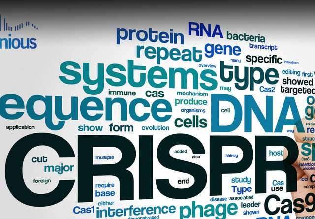 CRISPR Mice