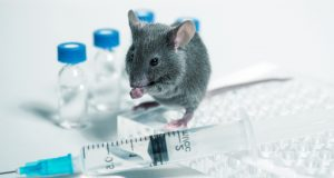Common Food Additive May Weaken Flu Vaccine, As Seen In Mouse Models