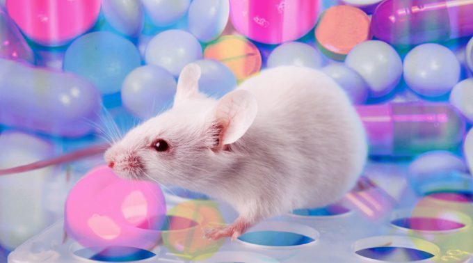 Monthly Animal Model Roundup: April