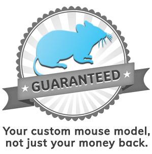 Guaranteed Custom Mouse Model